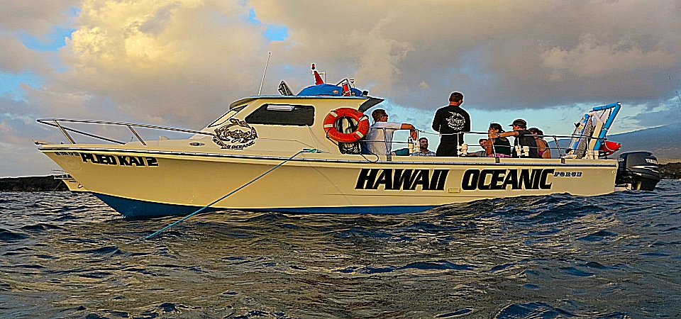 Hawaii Oceanic boat Pueo Kai 2 provides manta ray night snorkel tours, dolphin tours, and Kealakekua Bay tours